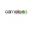 Camaleon profesional bodypaint